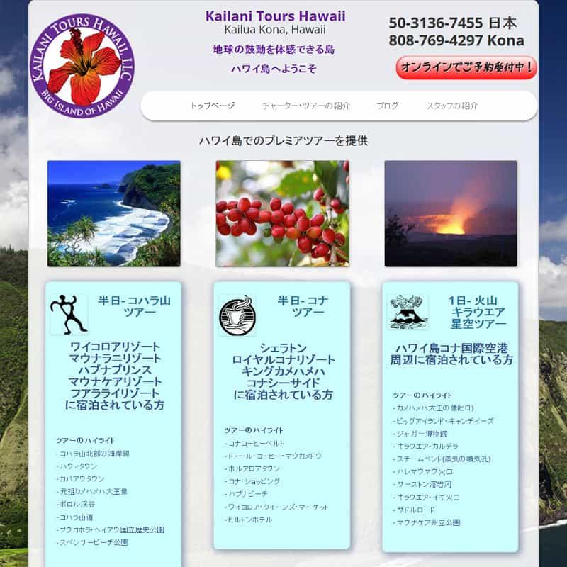Custom bilingual website