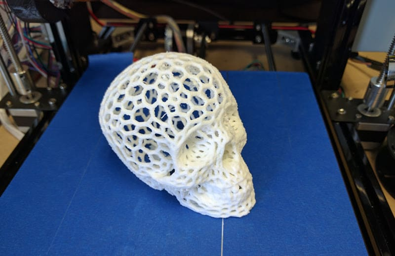 3d printed scull