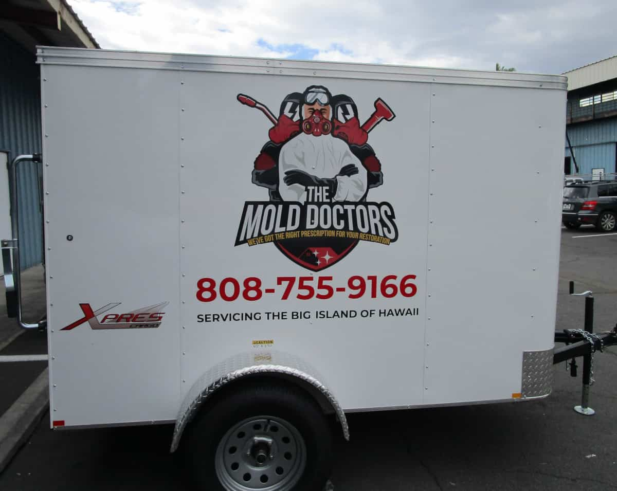 Cut Vinyl Vehicle